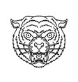 tiger head in line style for logo label sign vector image