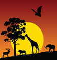 wild animal in nature vector image
