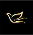gold bird business logo vector image vector image