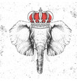 hipster animal elephant in crown vector image