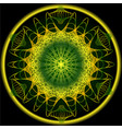 mandala in spring nature colors for vitality vector image