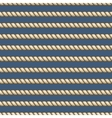 Marine ropes striped seamless background vector image vector image