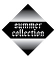 summer collection label vector image