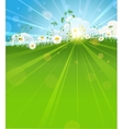 Sunny summer morning vector image vector image