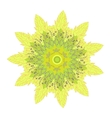yelow flower vector image vector image