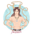 astrological sign taurus vector image vector image
