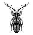 Beautiful Beetle Exotic Insect vector image vector image