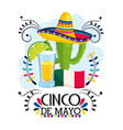cactus plant with hat to mexican event vector image