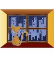 cat in window vector image vector image
