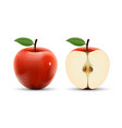 integer and cut apple isolated on white vector image vector image