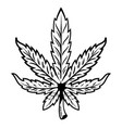 leaf of marijuana vector image