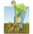 Man digging spring soil with shovel vector image vector image