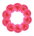 pink dahlia wreath vector image