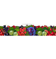 seamless line pattern with fruits and berries vector image vector image