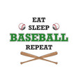 sketch ball and bat with typography vector image vector image