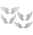 Heraldic wings vector image