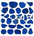 a set of bright blue rose petals vector image vector image
