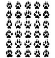 black print of dogs paws vector image vector image