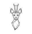 head of a roe deer vector image