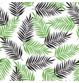 pattern with black and green palm leaves vector image vector image