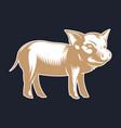 pork or pig silhouette vintage logo design vector image vector image