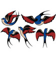 swallows vector image