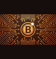 golden bitcoin digital currency web money concept vector image vector image