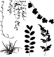 silhouettes of leaf and vine plant vector image vector image