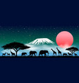 african animals at night vector image vector image