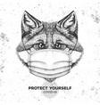 animal fox wearing face medical mask covid-19