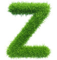 capital letter z from grass on white vector image vector image