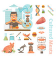 cultured meat laboratory objects collection vector image vector image