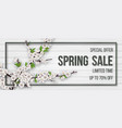 spring card with blooming branch vector image