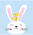 easter bunny with birds vector image vector image