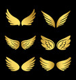 golden wings collection angels wings vector image vector image