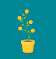 investment concept with home plant in flower pot vector image