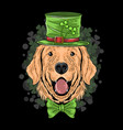 st patricks day cute golden retriever puppy dog vector image vector image