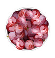 top view grapes in a plate vector image vector image