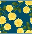 yellow dahlia on indigo blue background vector image vector image