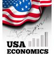 american economics with flag vector image
