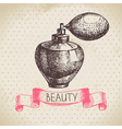 Beauty sketch background vector image vector image