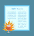 beer glass with wheat ears isolated vector image vector image