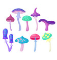 flat set of different magic mushrooms vector image