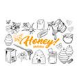 honey sketches set bee hive honey jar barrel vector image