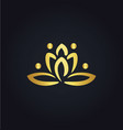 lotus flower abstract gold logo vector image vector image