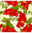 seamless texture branches red hibiscus tropical vector image