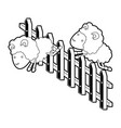 sheep animal couple jumping a wooden fence black vector image
