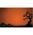 Silhouette of Halloween pumpkins and dry tree vector image vector image