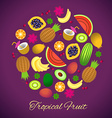 tropical fruits vector image vector image
