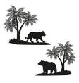 tiger and bear shadows vector image